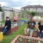 Millennium Community Garden