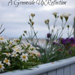 2014 - A Greenside Up Reflection
