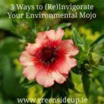 3 Ways To (Re)Ignite Your Environmental Mojo