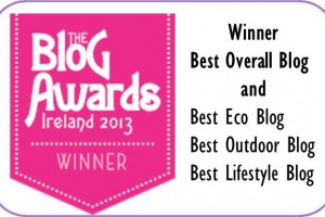 Winner Best Overall Blog, The Blog Awards Ireland