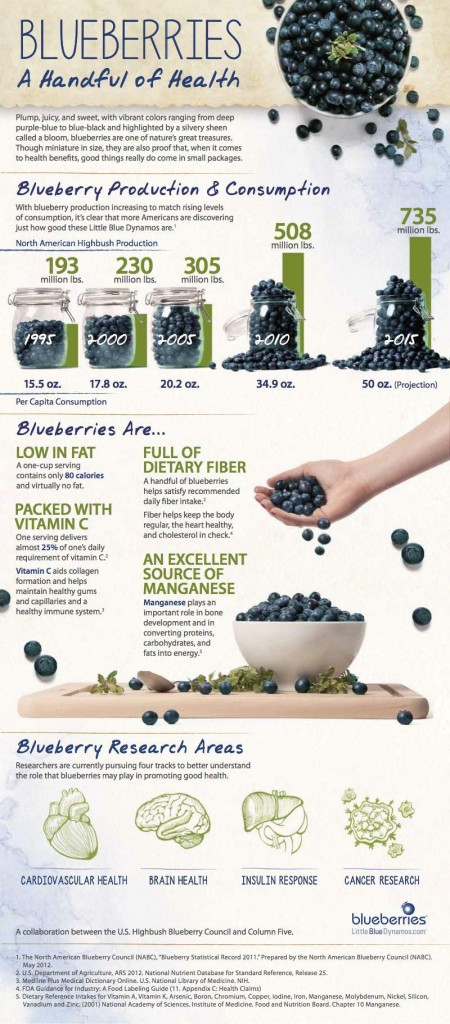 From Bush to Bun - How to Grow and Bake Blueberries