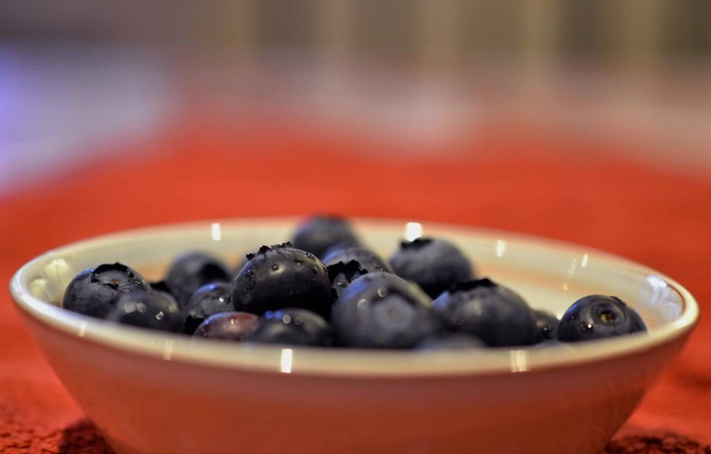 From Bush to Bun - Growing & Baking Blueberries