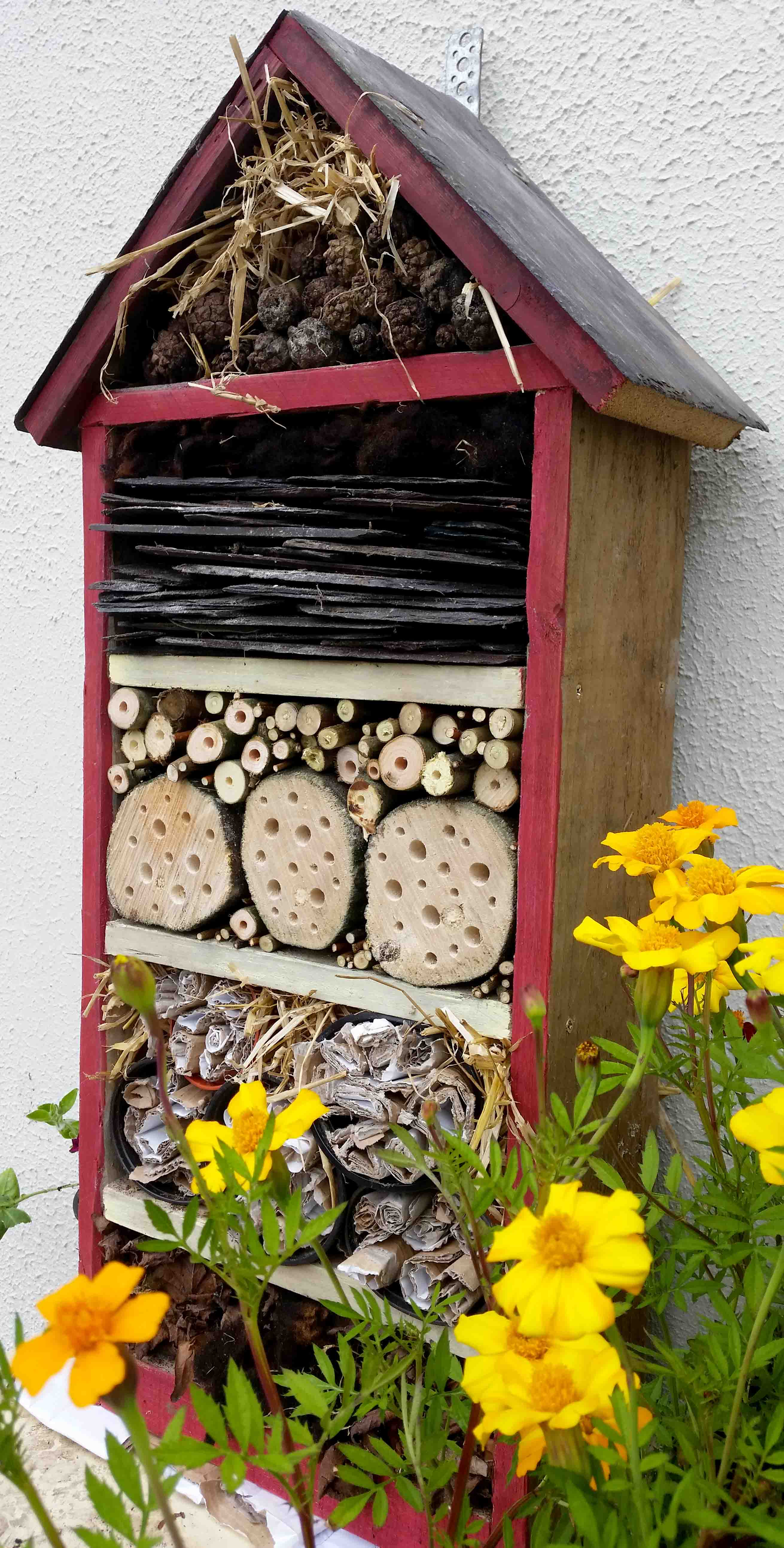 How we can help bees and pollinators in our gardengreenside up for Help building a house