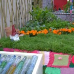 Bloom 2013 – How a Postcard Community Garden Evolved