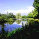 Carlow Hill Walking Festival 2014 River Barrow