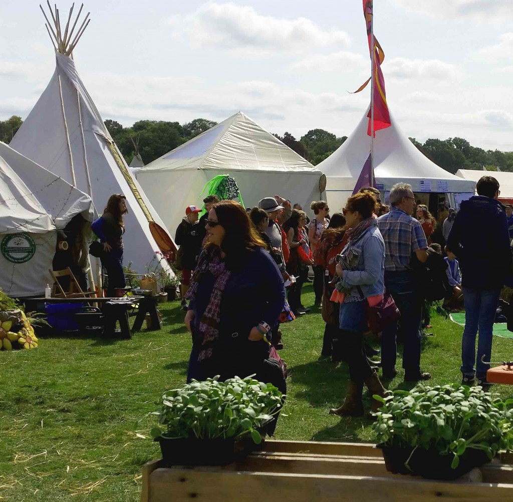 Was the Electric Picnic Ready for a Community Garden?