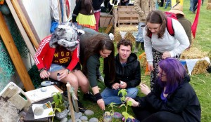 Was Electric Picnic Ready for a Community Garden?