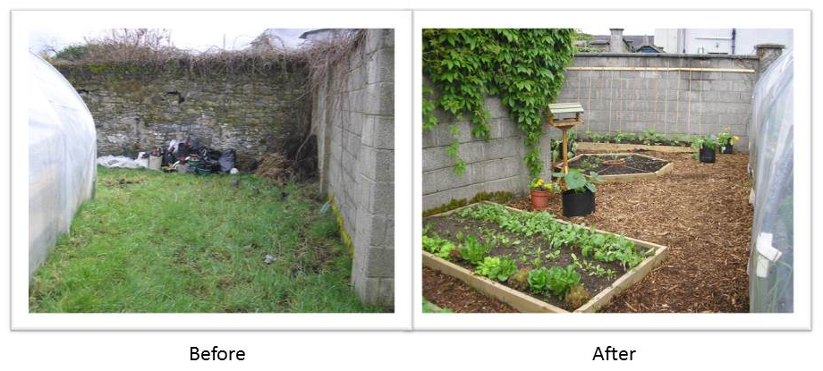 garden before and after landscaping before and after landscaping