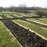 What's growing in the Sewelly vegetable garden in April?