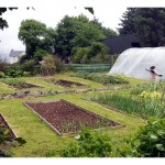 The Greenside Up Vegetable Garden – Video Blog