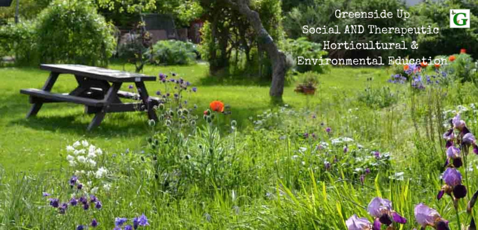 Greenside Up Social AND Therapeutic Horticultural & Environmental Education