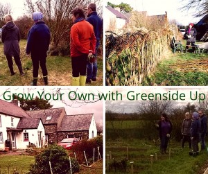 What to expect at a Grow Your Own Vegetable Garden Workshop at Greenside Up