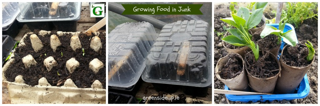 Grow Your Own Vegetables in Junk