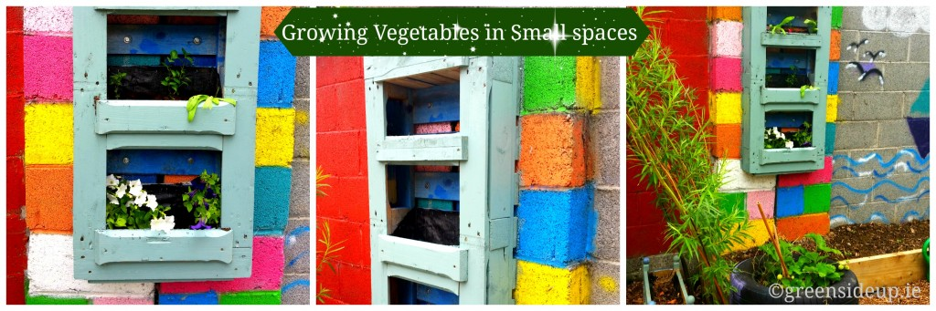 Growing Vegetables in Small Spaces