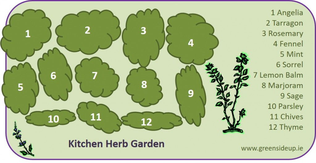 How to Create an Herb Garden