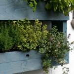 Herb Pallet Planter