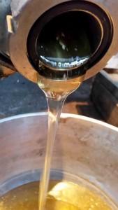 How Honey Bees Make Honey
