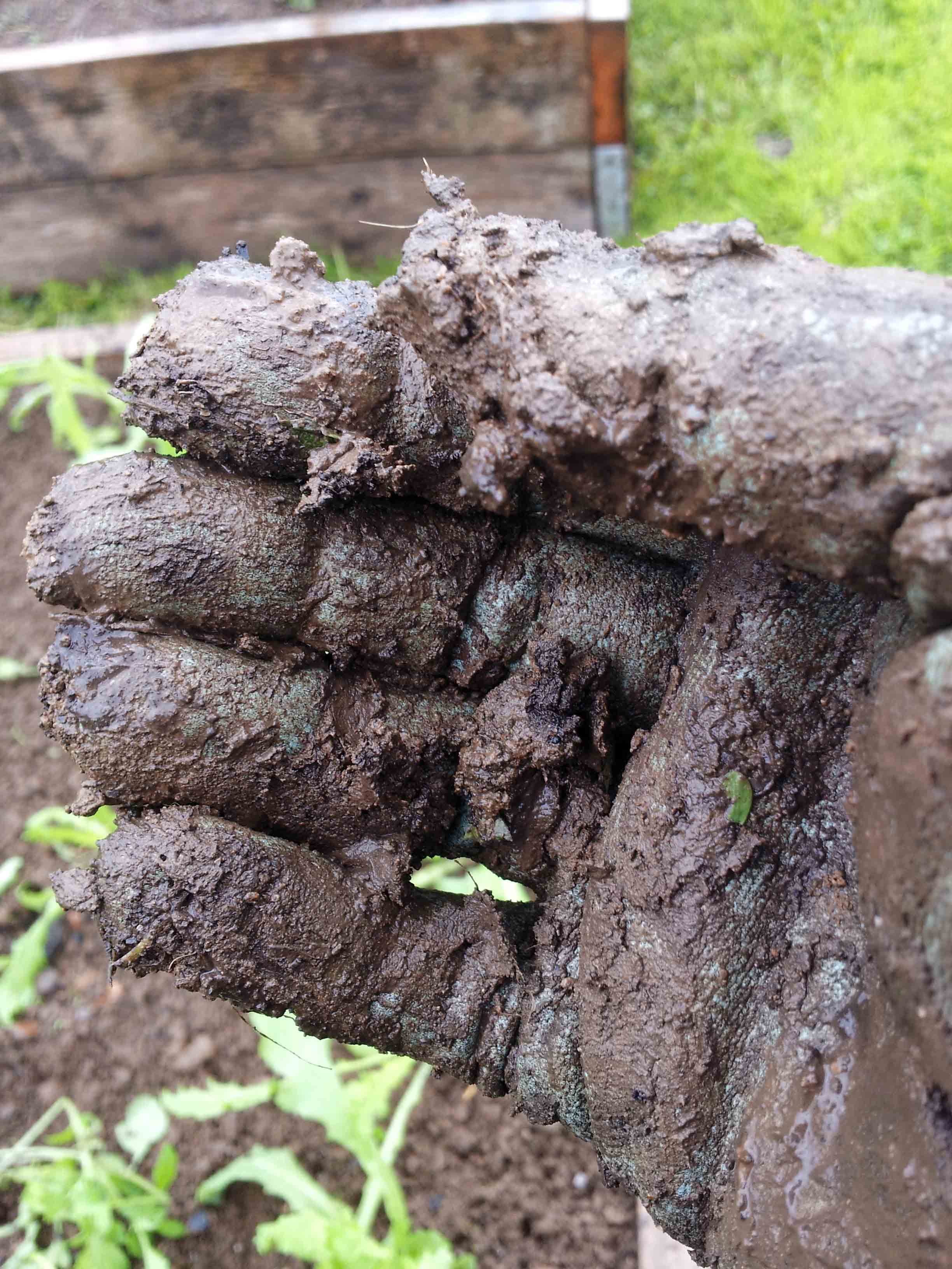 3 ways to protect your garden soilgreenside up for Words to describe soil