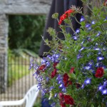 Two Beautiful Garden Ideas in County Carlow