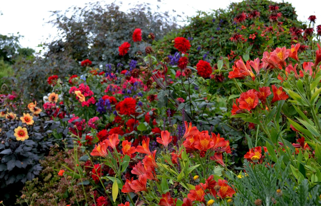 Fancy visiting a garden this weekend? Here's a few ideas.