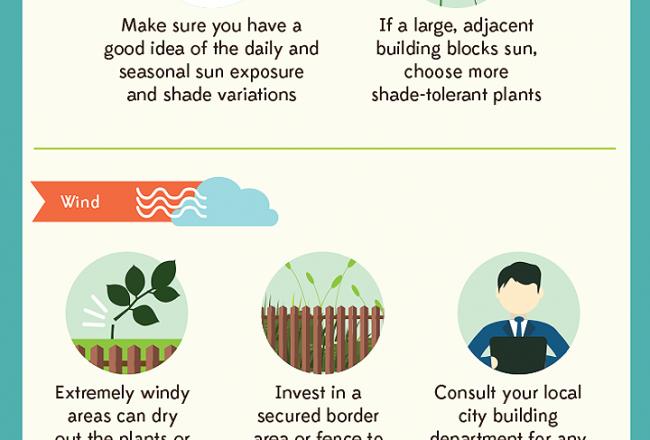 Rooftop_Garden_Infograph