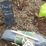 Slated Ireland Plant Markers – Product Review