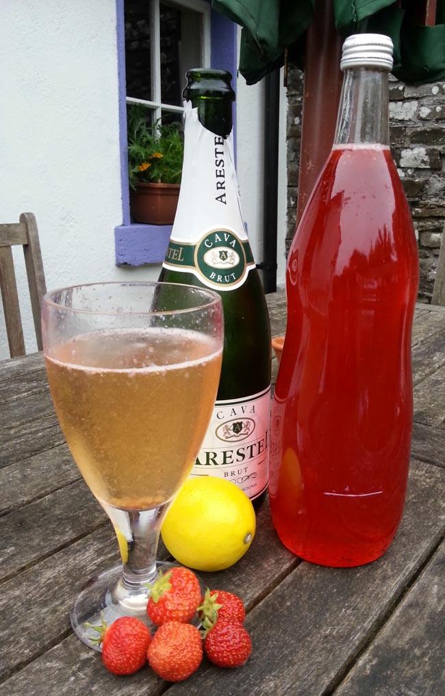 Strawberry Sensation (Strawberry Cordial & Cava)