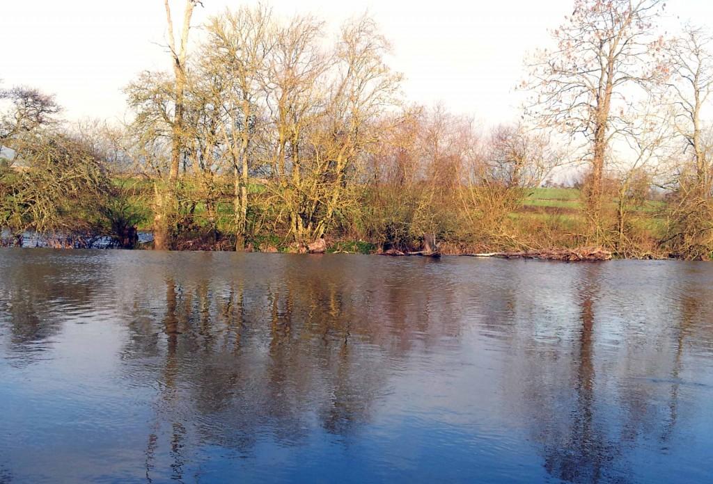 The weir on the River Barrow