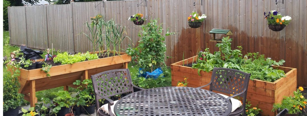 Grow A Garden In Pots How to grow vegetables in containersgreenside up how to grow vegetables in containers workwithnaturefo