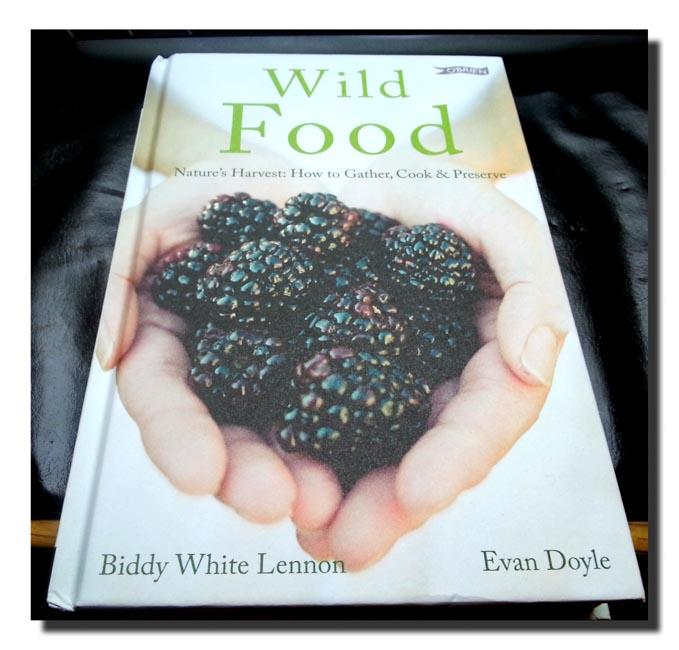Wild Food from O'Brien Press