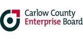 Representing Carlow at South East Women in Enterprise Awards