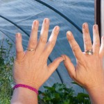 EarthTouch Project: The Hands That Change This Earth