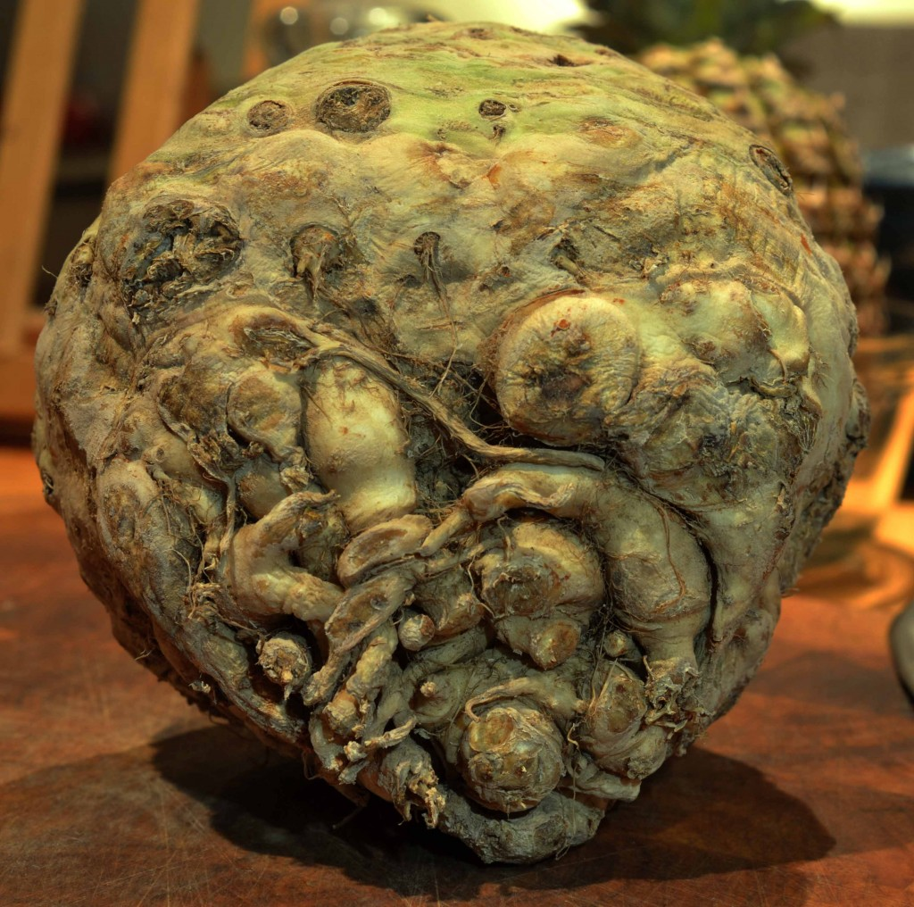 Celeriac - An Unusual Root for a Simple Soup