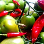 How to sow Seeds: Hot Peppers
