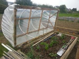 Start Up Essentials for a Community Garden |Greenside Up