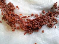 How to Grow Cress Seeds