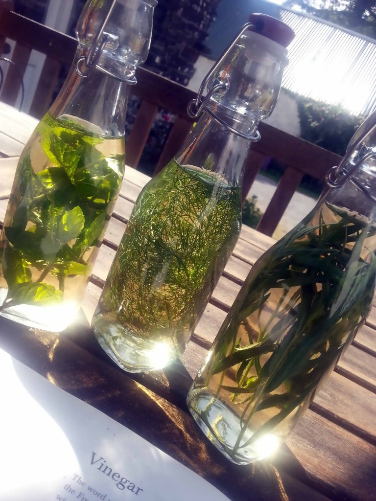 How to preserve herbs | greensideup.ie