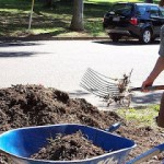 Guest Post: Organic Mulching ~ What's that all about?