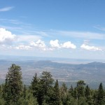 Nature's nature, wherever you live – Sandia Peak, New Mexico