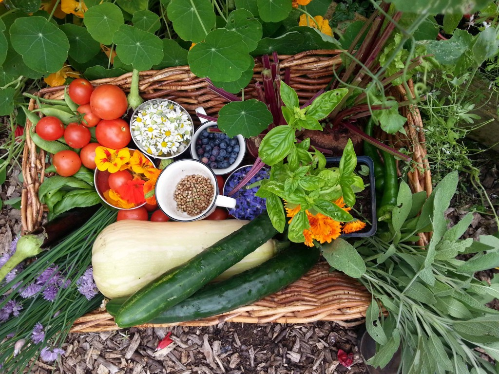 Goresbridge Community Garden Fresh Produce Basket