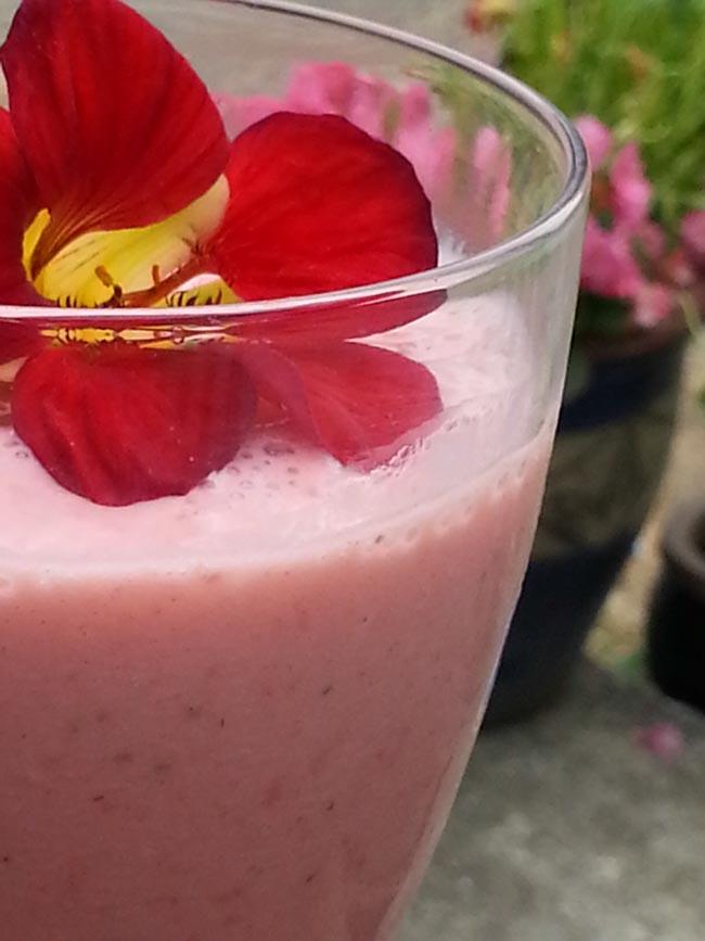 Strawberry Smoothie Recipe  | greensideup.ie