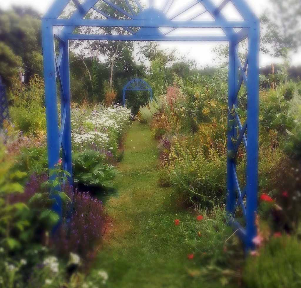 Back Yard Potager: A French Potager Garden In Ireland