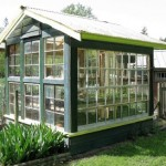 Polytunnels & Greenhouses: is cheaper better?