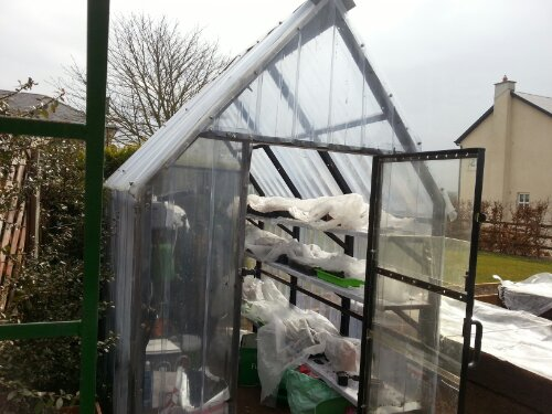 Imelda & Ollie's Greenhouse in Goresbridge