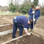 Vegetable Garden Workshops