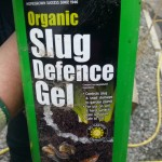 Slugs & Snails – Slug Defence Gel