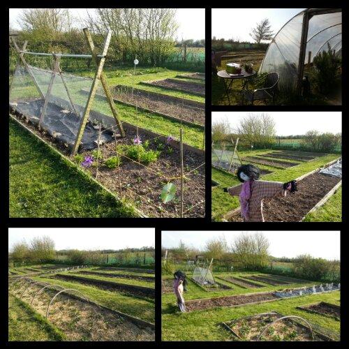 The Greenside Up Vegetable Garden